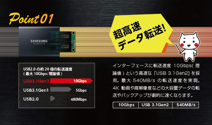 ssdpoint01