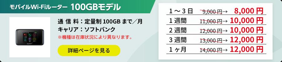 ポケットWi-Fi 100GBモデル