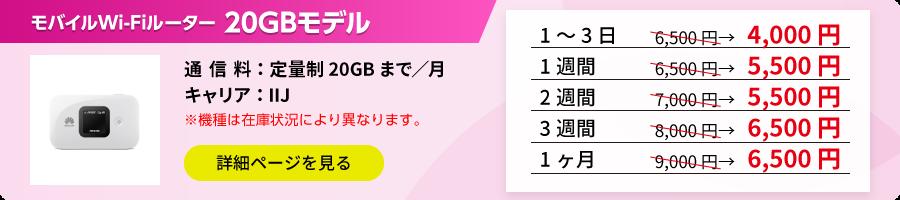 ポケットWi-Fi 20GBモデル