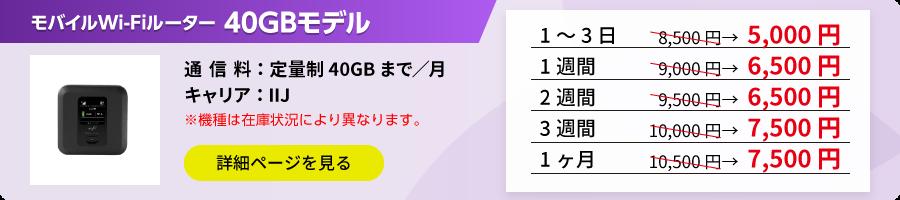 ポケットWi-Fi 40GBモデル