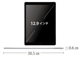 iPad Pro 第2世代 12.9インチ 64GB  SIMカードセット(容量20GB/月) サイズ