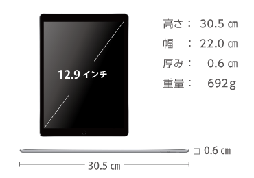 iPad Pro 第2世代 12.9インチ 64GB  SIMカードセット(容量20GB/月) 画像2