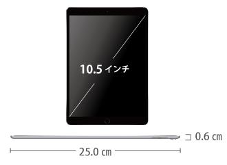 iPad Pro 10.5インチ 64GB SIMカードセット(容量20GB/月) サイズ