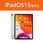 Apple iPad Pro 第1世代 11インチ256GB Wi-Fi
