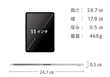 iPad Pro 11インチ 256GB SIMカードセット(容量20GB/2月) 画像2