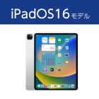 iPad Pro 第4世代 12.9インチ 256GB Wi-Fi