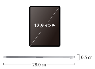 iPad Pro 第4世代 12.9インチ 256GB Wi-Fi サイズ