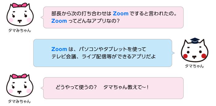 Zoom 回線 速度